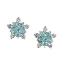 E1713 18KW Brazilian Paraiba and Diamond Earrings